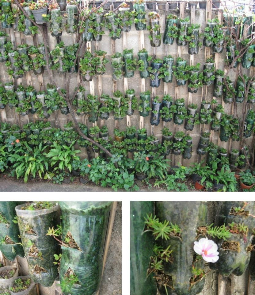 jardim vertical de garrafa pet passo a passo:Reciclagem de garrafas PET – utilize-as para plantar – artesanato.com