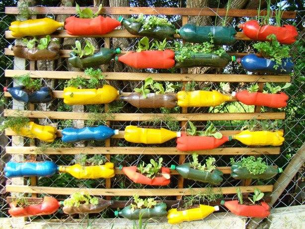 Reciclagem de garrafas pet utilize as para plantar for Jardines colgantes con material reciclado