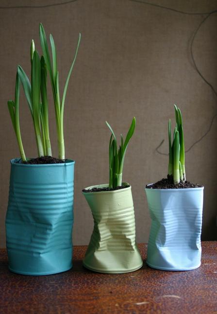 horta com lata reciclada
