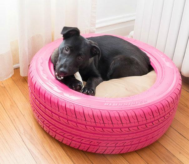 cama para cão
