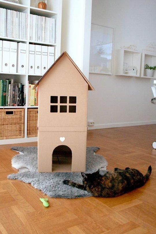apartamento-para-gatos