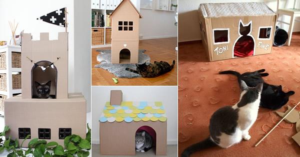 casinha-de-papelão-para-gatinhos