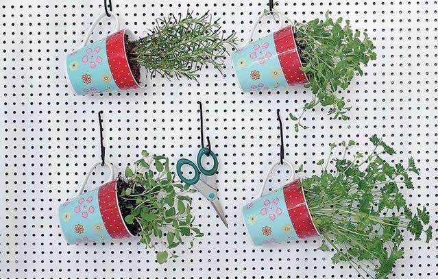 horta-vertical-ervas-em-canecas
