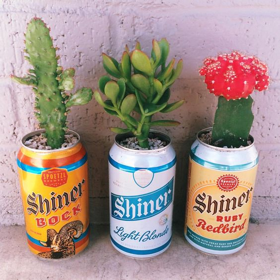 jardim artesanato com latinha de cerveja